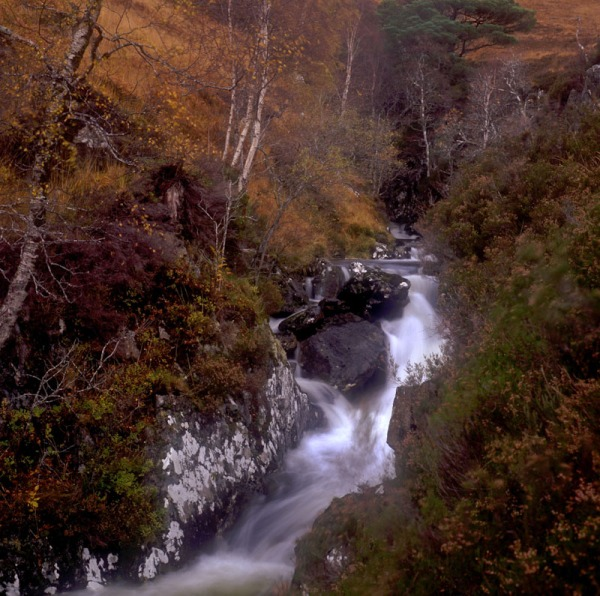 2011-11-13, Yashicamat, Velvia 50, Loch Affric 1