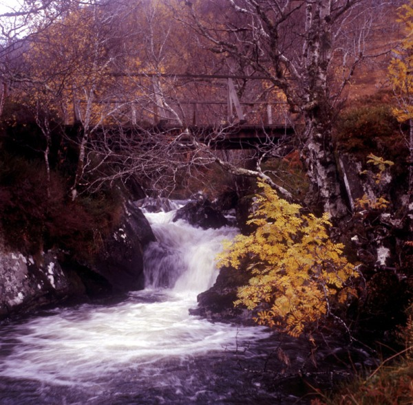 2011-11-16, Yashicamat, Provia 400X, Loch Affric, 2