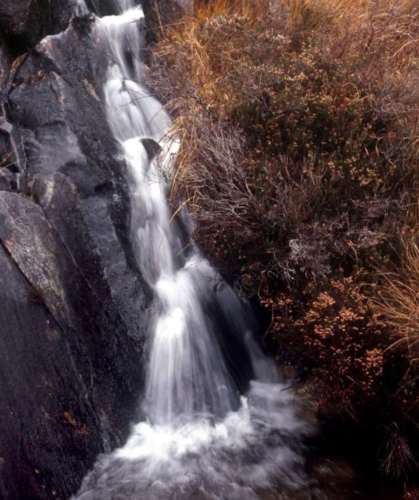 2011-11-16, Yashicamat, Provia 400X, Loch Affric, 5