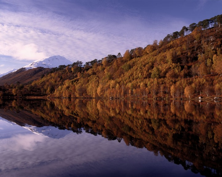 Loch Affric reflections - Mamiya RZ67 and Fuji Velvia. I normally take less saturated images then this, but it did really look like that !
