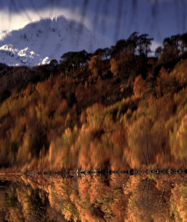 Inverted reflections, Glen Affric. Mamiya RZ67 and Fuji Velvia 50 film