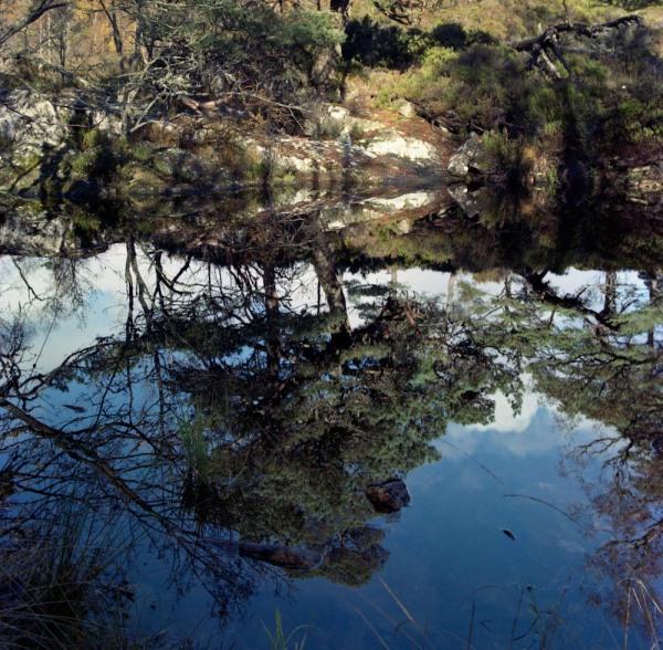 A small pool near the River Affric. Mamiya RZ67 and Kodak Portra 160