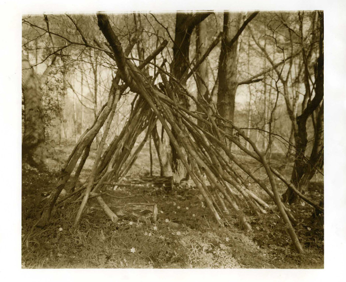 Print Scan, Woodland Shelter, RZ67, TMax100,FD10, Ilford MGIV FB, Sepia, 700px