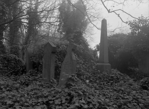 2014-11 Earsdon churchyard, RZ67, Ektar, Digibase,  001