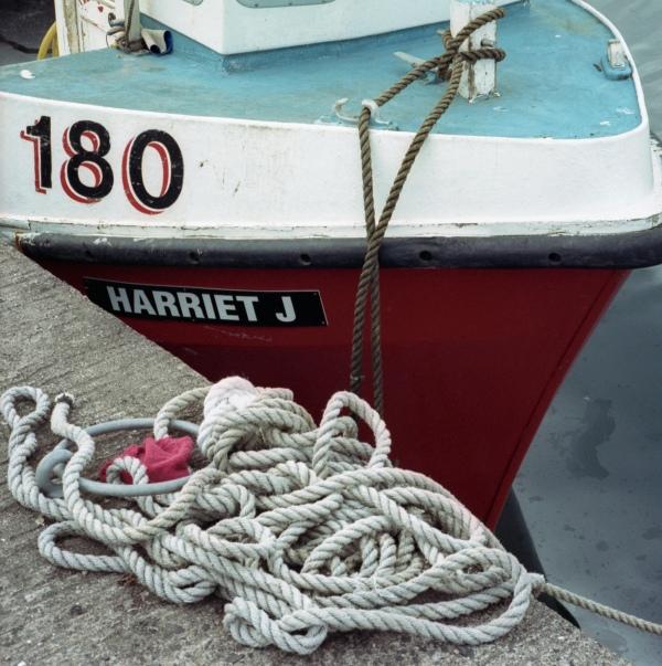 Harriet J