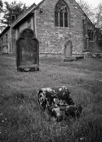 Kirkheaton, Northumberland, Rollei RPX100 film dev'd in Rodinal