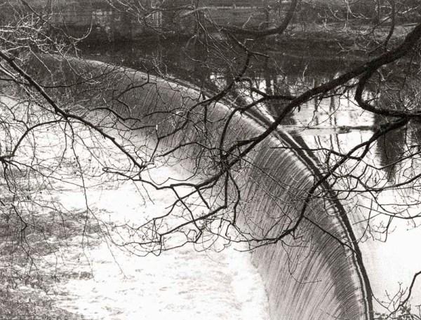 2016-1-23, Canon FTb, Shibdon Pond, Retropan 320, Rodinal 1+50 13m 20c, 031