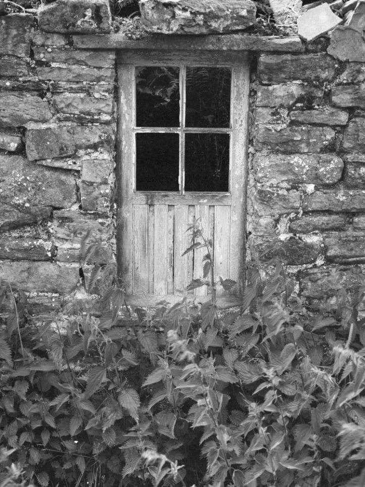 2016-6-11, Wharfedale, GA645, FP4+, Firstcall Dev, 035