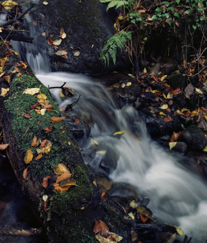 2016-10-31-falls-of-clyde-rz67-ektar-021