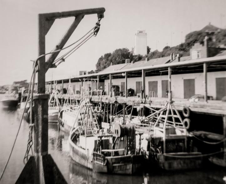 2018-8-30, Fish Quay, Coronet 12-Twenty, PanF, HC110 Dil E 17C 7m30s, 2 _